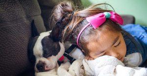 accogliere un cucciolo
