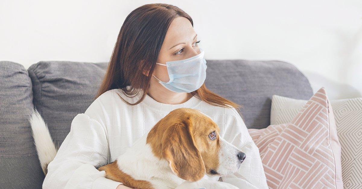 Coronavirus e animali