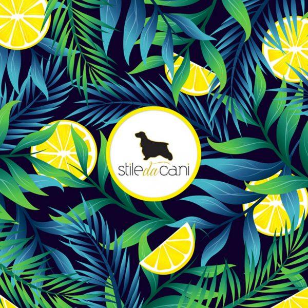Paraorecchie Cocker Lemon