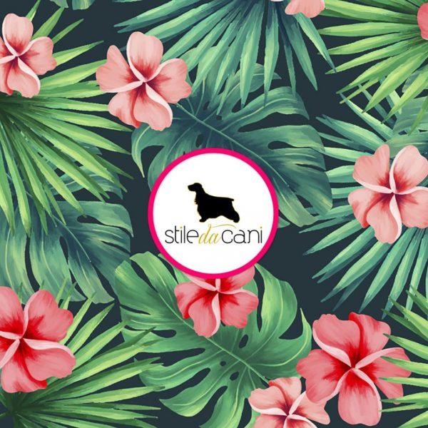 Paraorecchie per cani Tropical2
